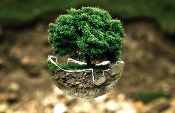 Jogi szakokleveles környezetvédelmi szakember