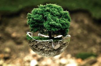 Környezetvédelmi szakjogász